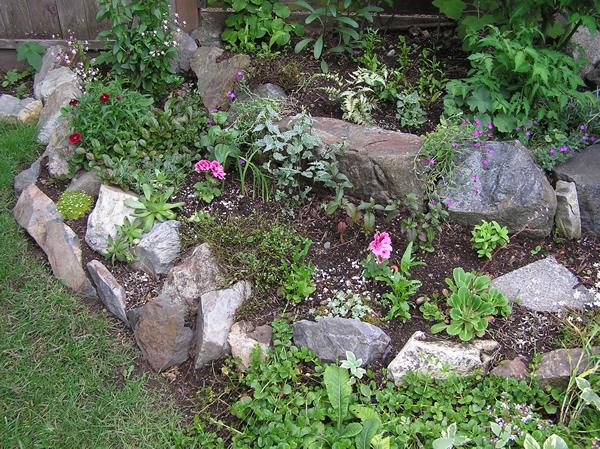 001 garden.jpg