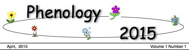 Phenology(April).jpg